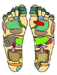 Self-treatment Reflexology Feet Foot